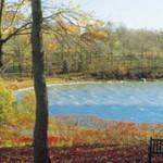 2006-picnicspot-south3