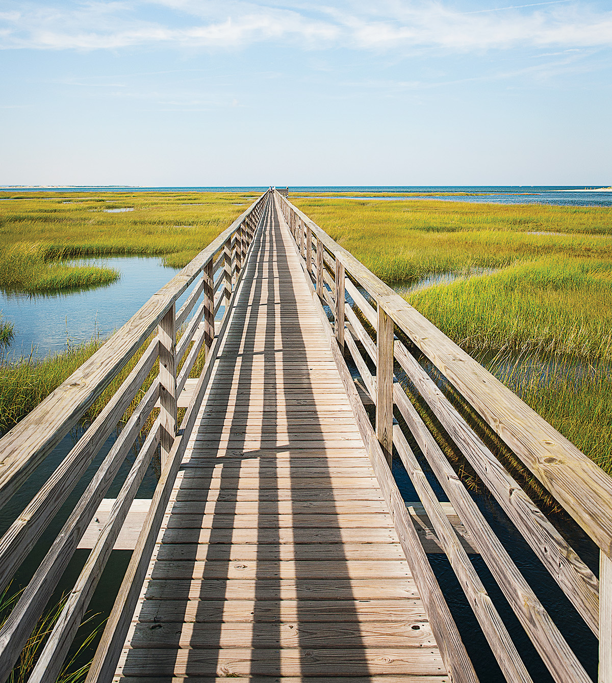 The boardwalk at Bass Hole (Photo by Trent Bell).