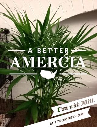 better amercia romney app