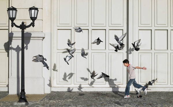 boy chasing pigeons