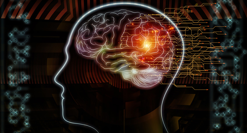 Brain image via Shutterstock