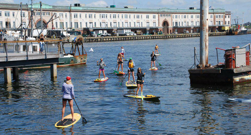Paddleboarding on the waterfront in Boston. Photo via Facebook
