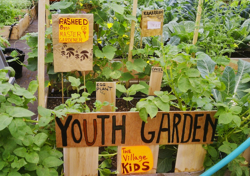 youthgarden1