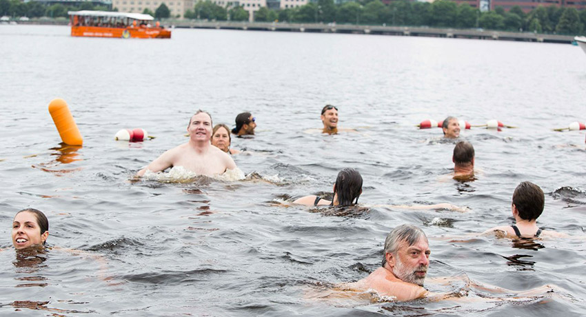 Saturday on the charles. swimmers will be a new site for people in duck boats. All photos provided by Topher Baldwin/Charles River Conservancy.