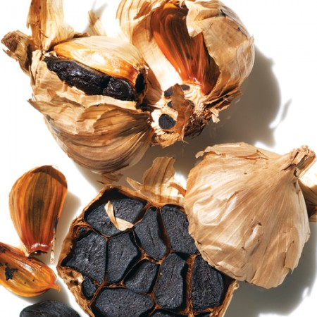 black-garlic-boston-sq