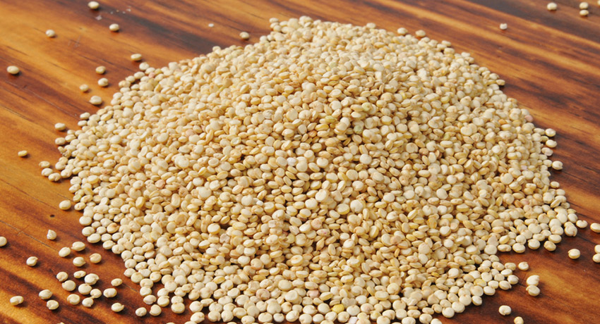 Quinoa photo via shutterstock
