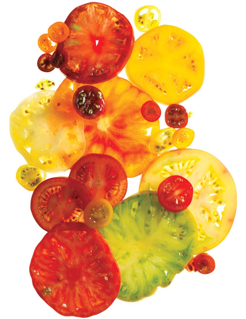 tomato-dishes-boston-chefs