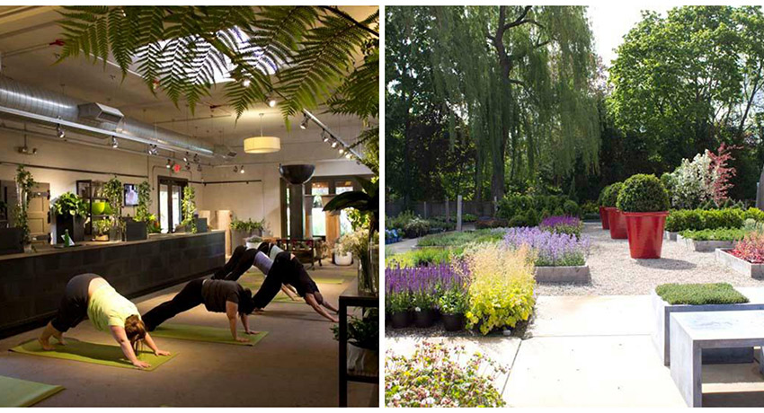 The best smelling yoga class ever. Images provided.