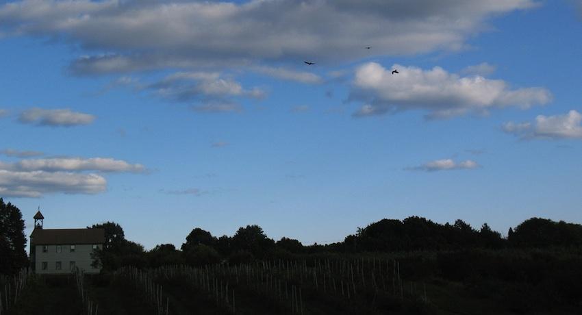 Brooksby Farm Image via flickr/aaronknox