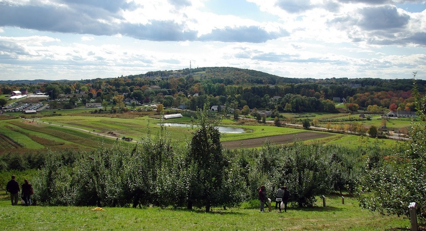 Cider Hill Farm Image via flickr/paul-w-locke