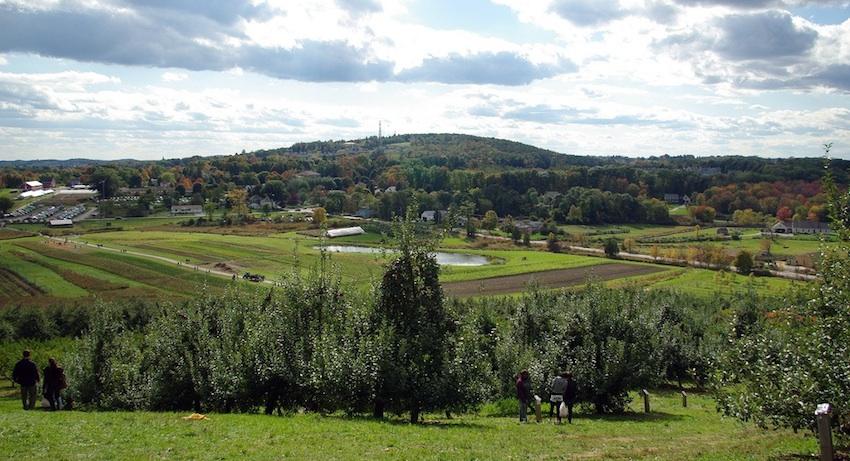 Cider Hill Farm Image via flickr/paul-w-locke