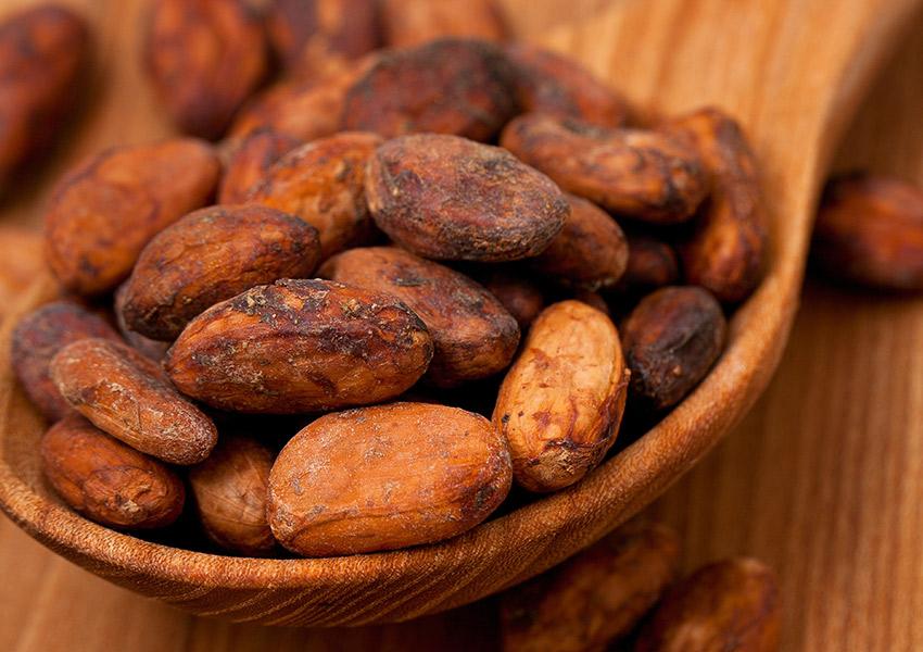 Cocoa beans photo via shutterstock