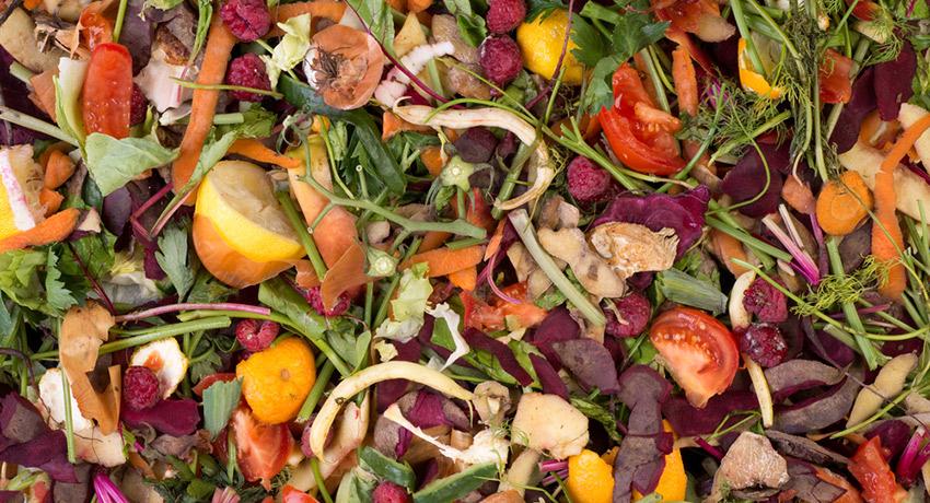 Food scraps image via shutterstock