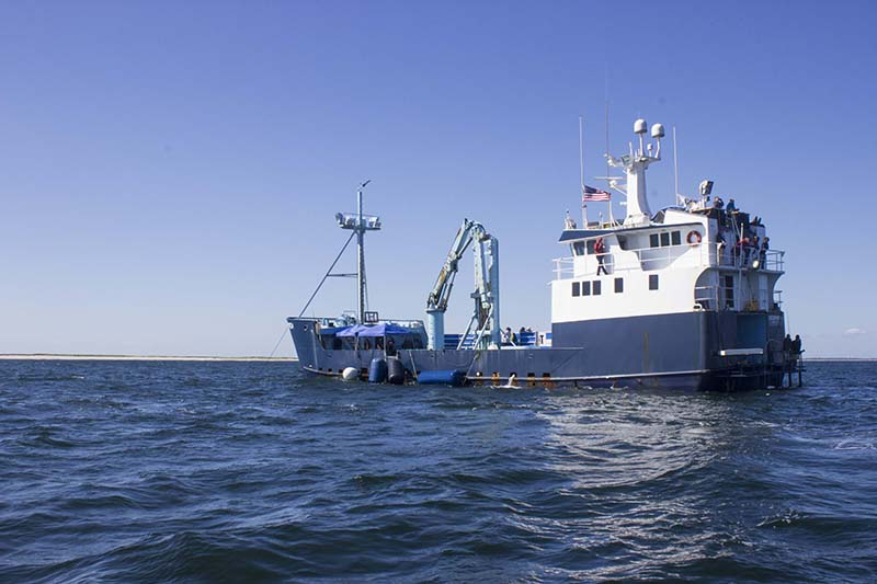 The OCEARCH at sea/Photo by Olga Khvan