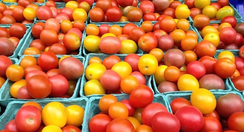Wheeler Brook Farm produce image via Wheeler Brook Farm Facebook.