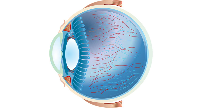 Eye image via shutterstock