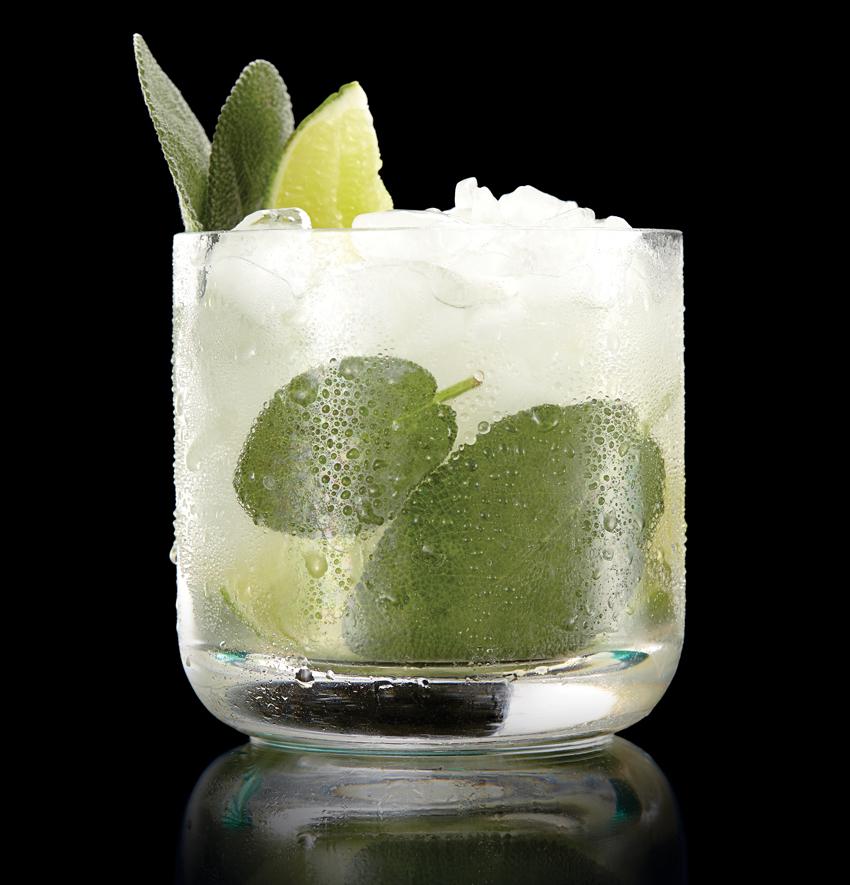 spice-cocktails-sarma