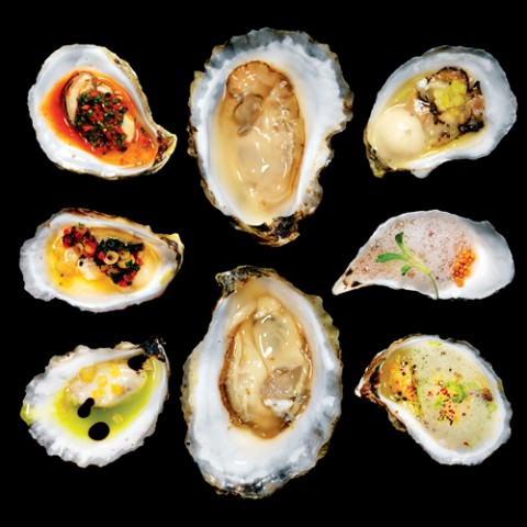 boston-restaurants-oysters-sq