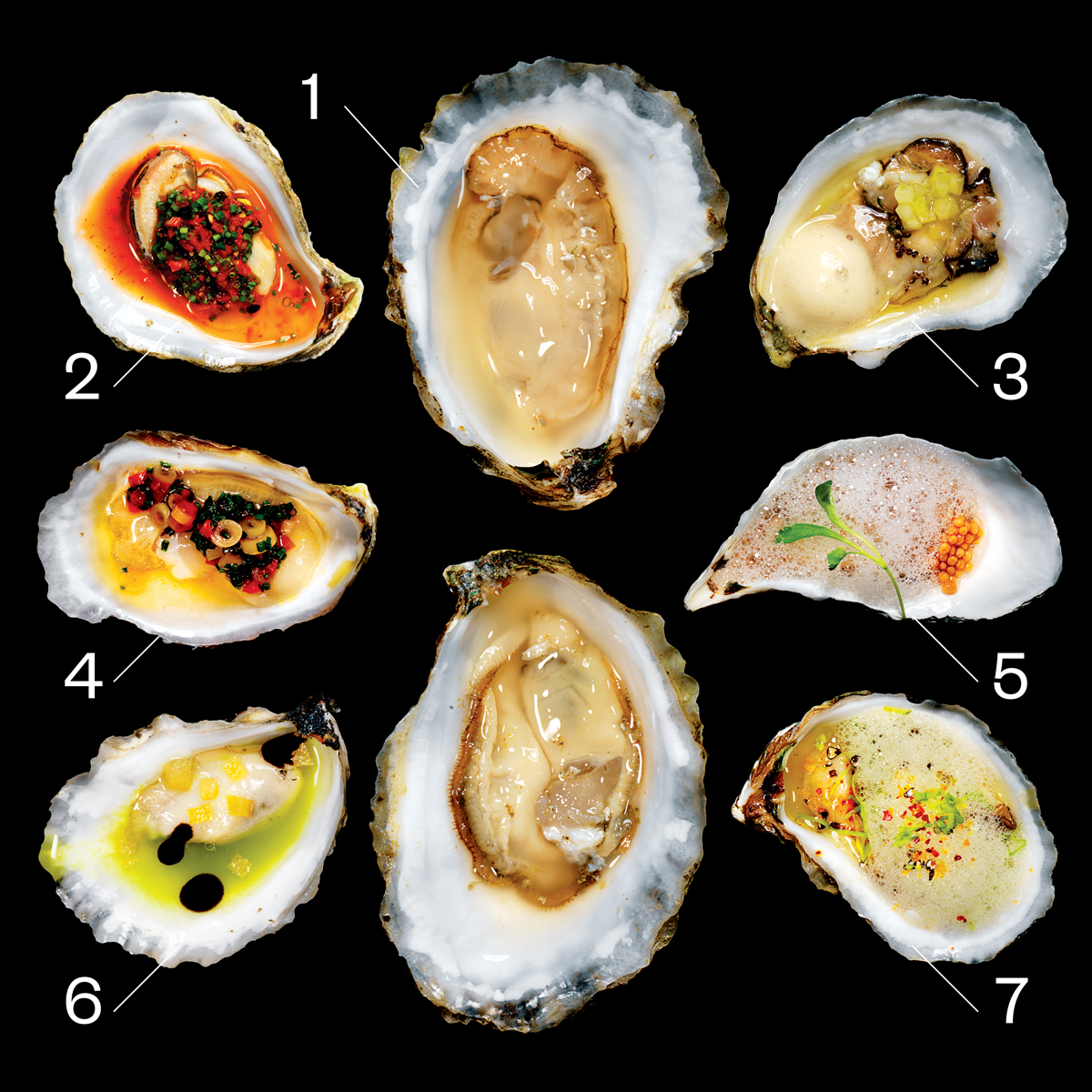 Boston Restaurants Oysters