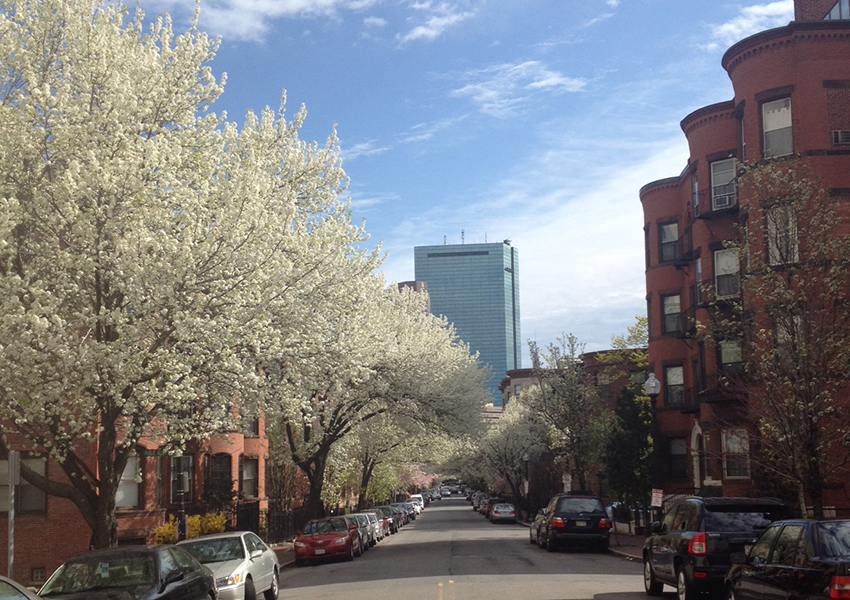 The South End. Photo by Melissa Malamut