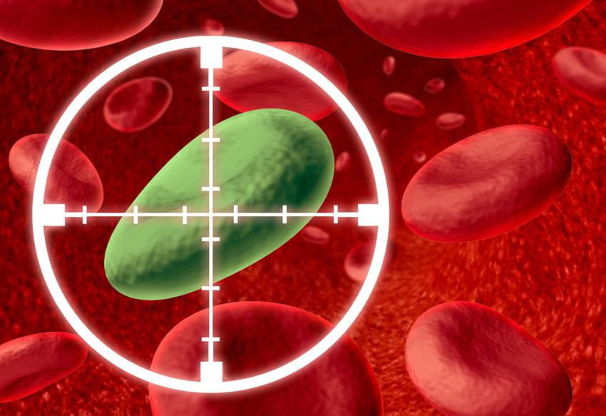 Targeted virus cell image via shutterstock