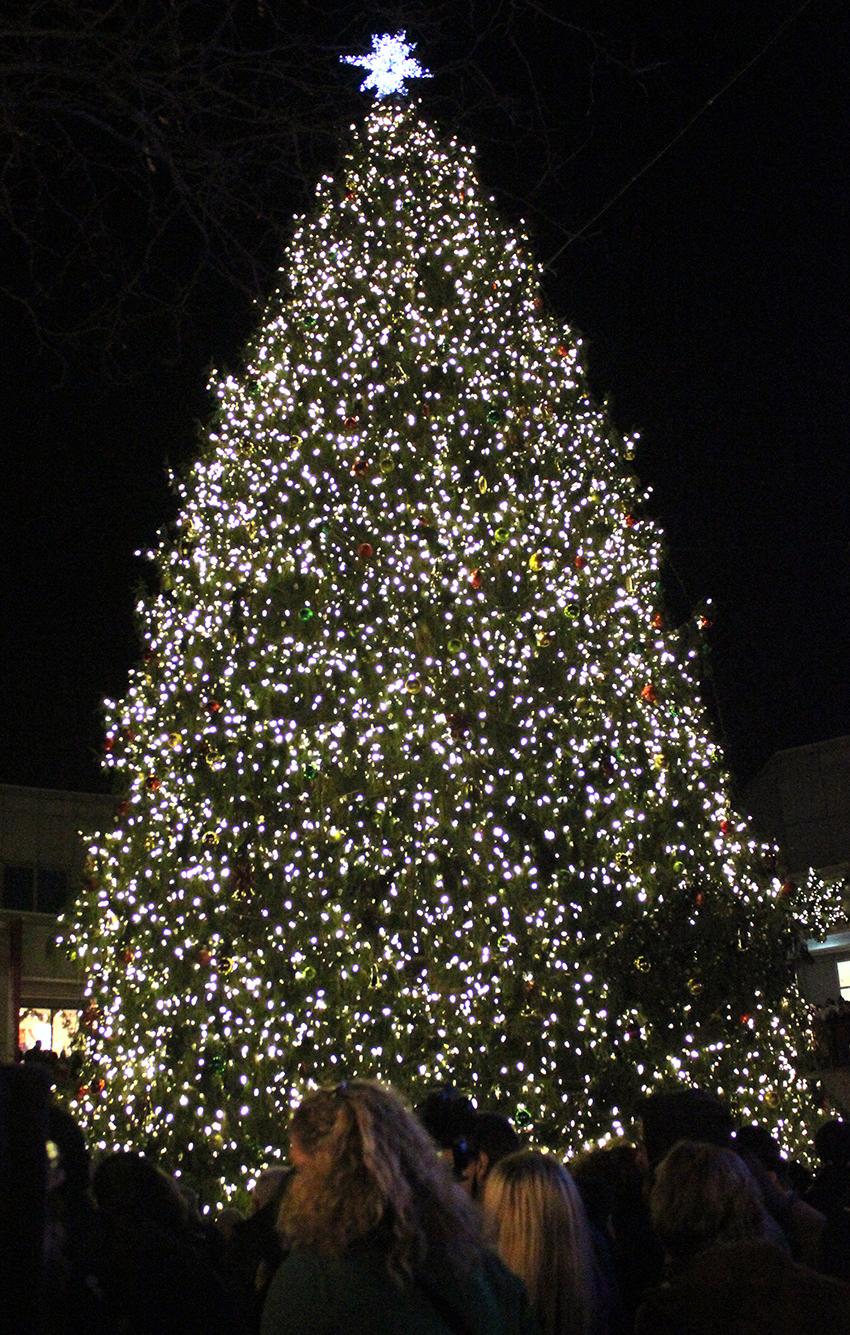 faneuil hall blink tree lighting
