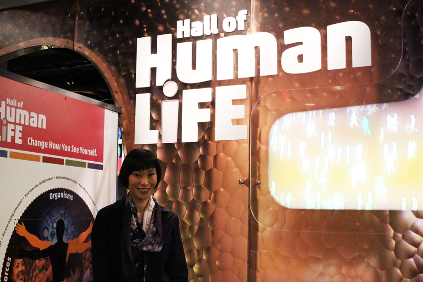 hall of human life museum of science boston