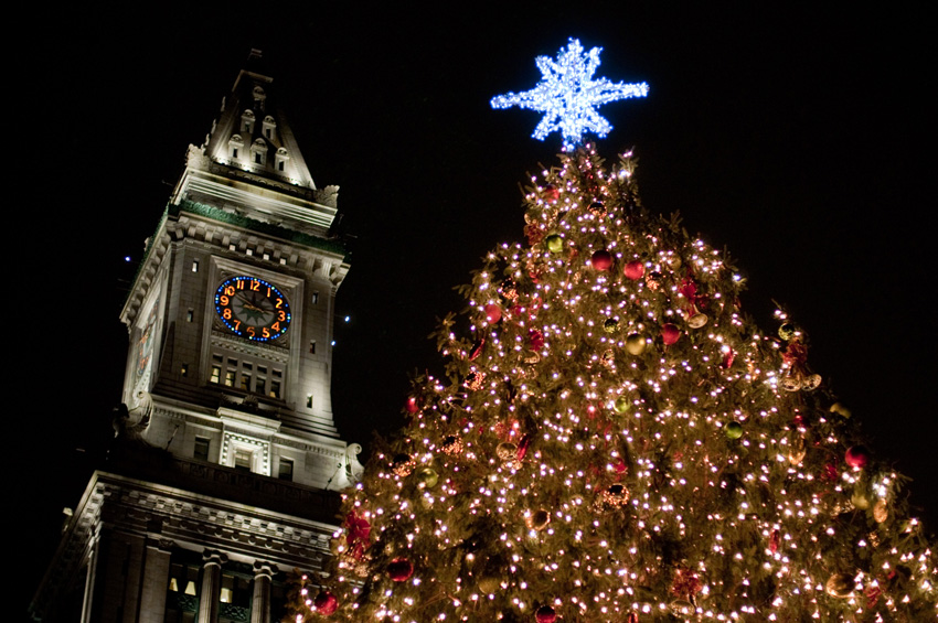 boston-christmas-tree
