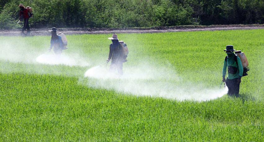 Pesticides image via shutterstock