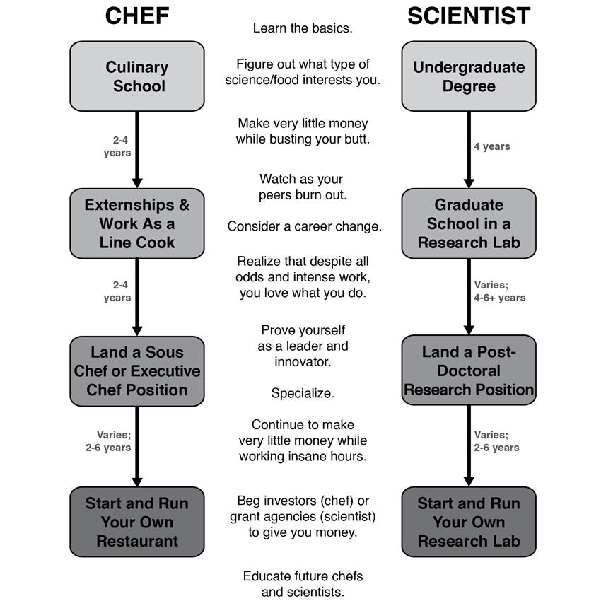 chef vs scientist