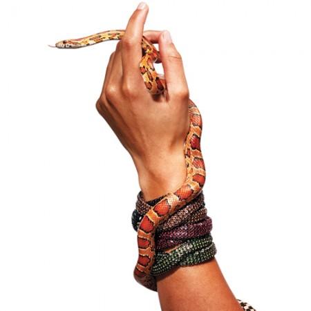 whiting-davis-snake-jewelry-sq