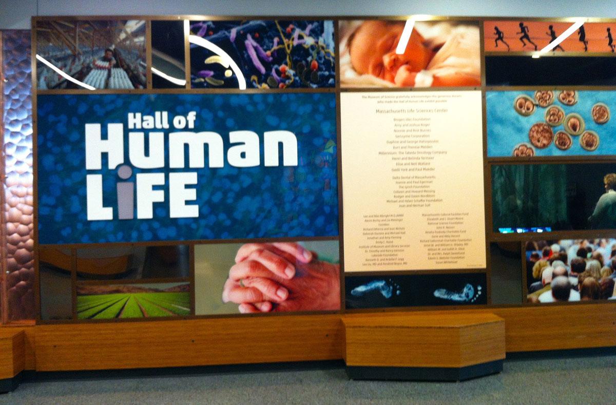 Hall of Human Life entrance, photos by Stephanie Cohn