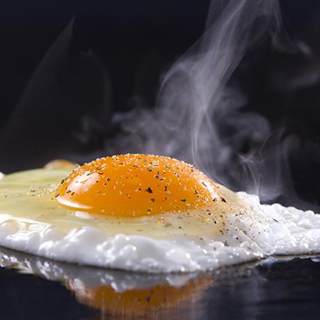 egg-square