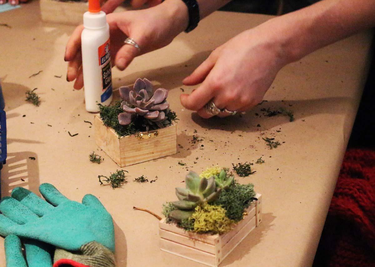 third thursdays isabella stewart gardner museum