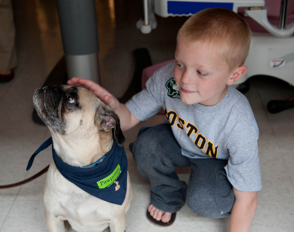 Pawprints dog Phil with Boston Children's Patient. All photos provided.