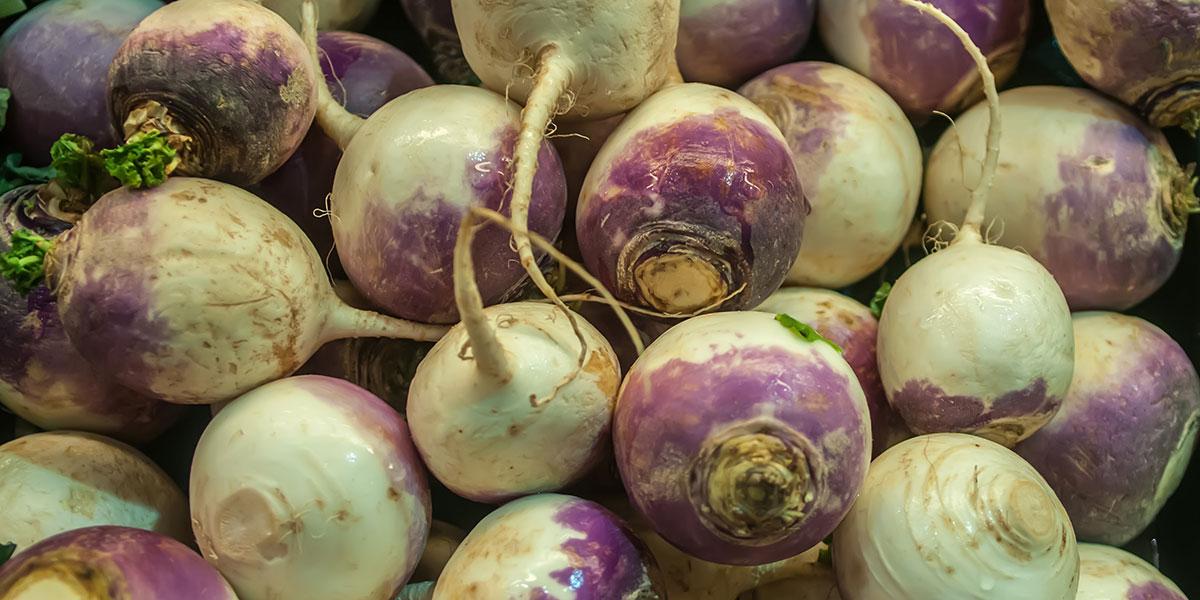 turnips image via shutterstock