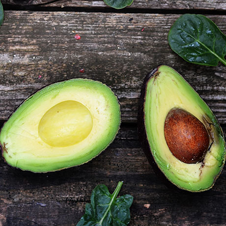 avocado-square
