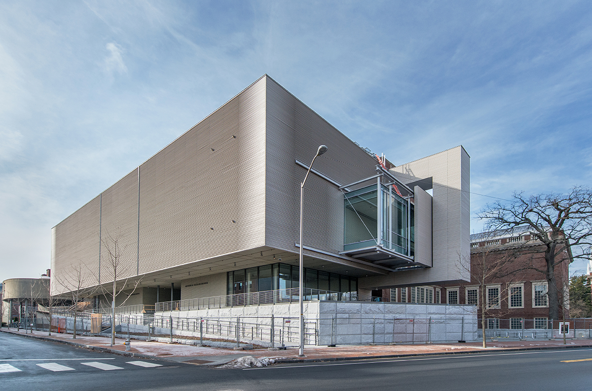 harvard art museums renovation 1