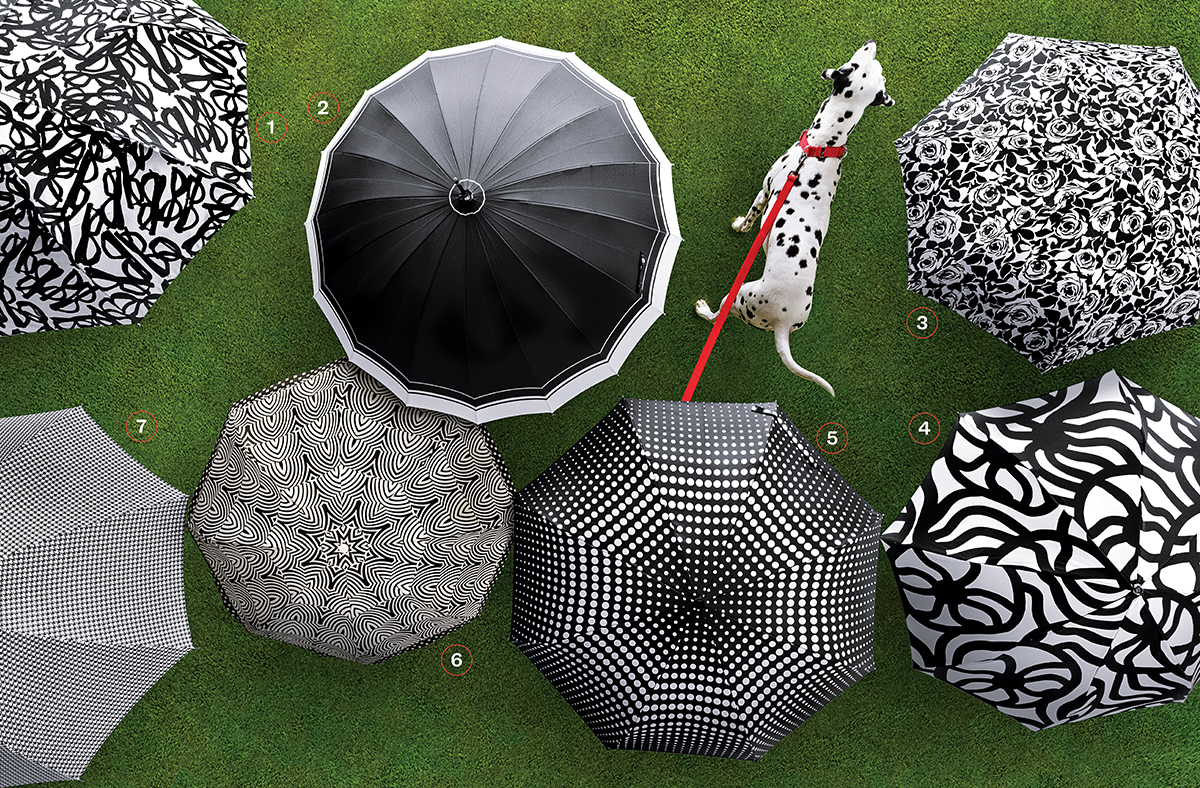 spring black-and-white umbrellas