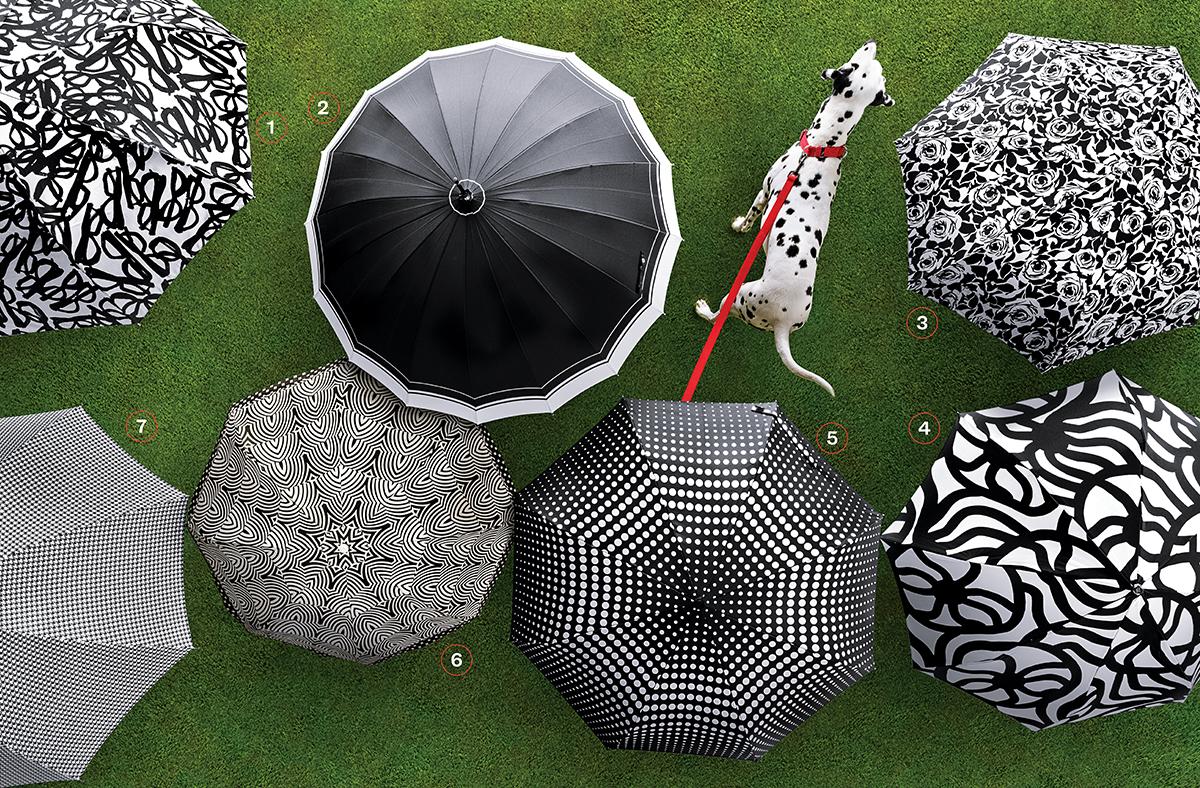 spring black-and-white umbrellas