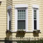 South Boston Window Boxes photo