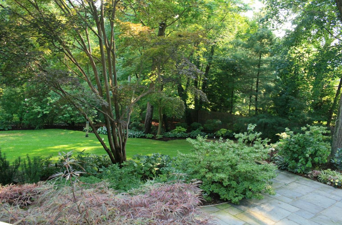 10 questions with landscape designer amy van doren for Garden design questions