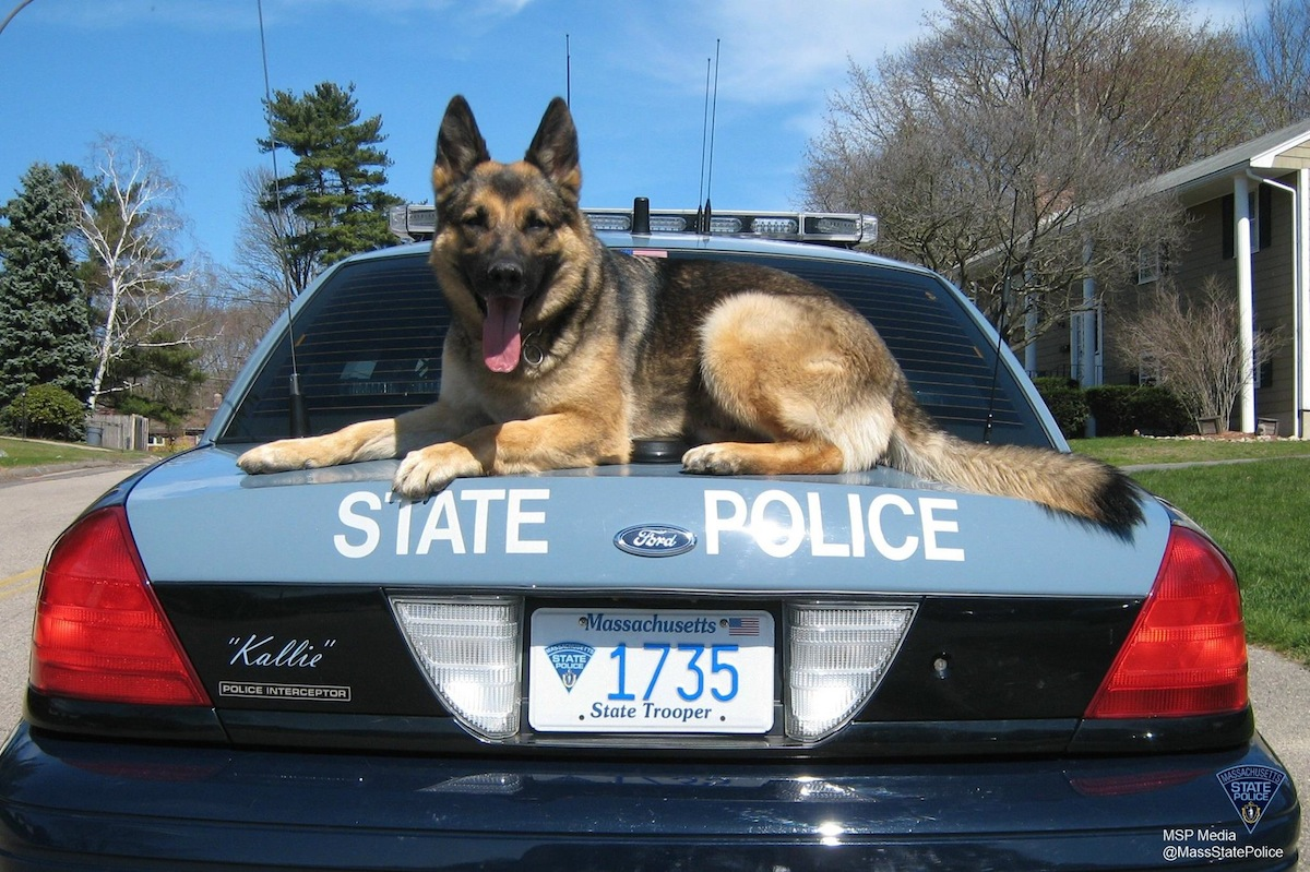 Image courtesy of State Police