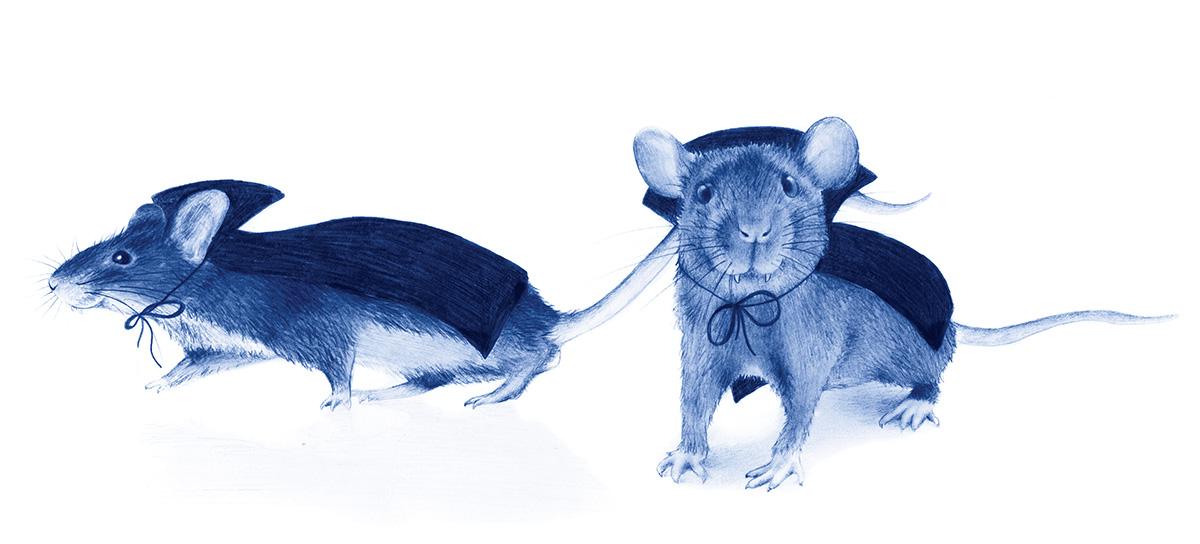 vampire mice