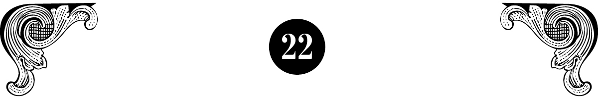 true crime boston number 22