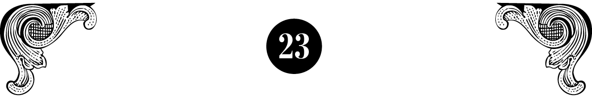 true crime boston number 23