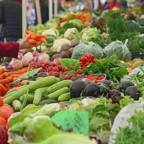 veggies-square