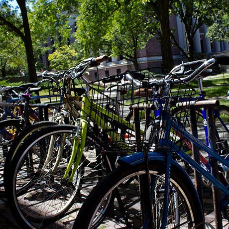 bikes-square
