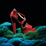 Photograph by Bruce Peterson. Styling by Kara Butterfield.