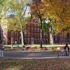 school-square